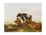 Cattle in a River Landscape Giclee Print by Thomas Sidney Cooper