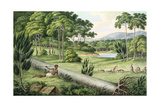 "Aborigines Hunting Kangaroos, from His ""Drawings of the Natives and Scenery of Van Diemans Land,… Giclee Print by Joseph Lycett"