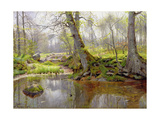 Woodland Pond, 1890 Giclee Print by Peder Mork Monsted