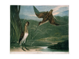 Snipes, Plate 3 of British Feather Game, Engraved by the Artist, Pub. by R. Ackermann, C.1810 Giclee Print by Charles Turner