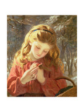 A New Friend Giclee Print by Sophie Anderson