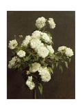 White Roses, 1870 Giclee Print by Henri Fantin-Latour