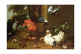 Poultry in Parkland Giclee Print by Melchior de Hondecoeter