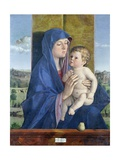 Virgin of the Pear Giclee Print by Giovanni Bellini