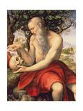 St. Jerome Giclee Print by Cesare Da Sesto