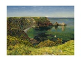 Anstey's Cove, Devon, 1854 Giclee Print by John William Inchbold