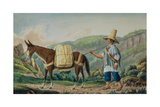 T649 Conveyance of the Mail in Colombia Giclee Print by Joseph Brown