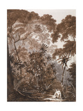 The Fan Palm in the Island of Cracatoa, from 'Views in the South Seas', Pub. 1788 Giclee Print by John Webber