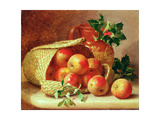Still Life with Holly and Mistletoe Giclee Print by Eloise Harriet Stannard