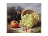 Still Life with Fruit, 1873 Giclee Print by Eloise Harriet Stannard