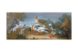 A Landscape with Parrots, Ducks and Pigeons Giclee Print by Jean-Baptiste Monnoyer