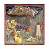 The Nativity, C.1305 Gicléedruk van  Giotto di Bondone