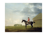 Gimcrack with John Pratt Up on Newmarket Heath, 1765 Giclee Print by George Stubbs