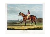 'Theodore', the Winner of the Great St. Leger at Doncaster, 1822, Engraved by Thomas Sutherland… Giclee Print by John Frederick Herring Snr
