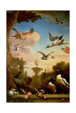 A Mallard and a Golden Eagle in a Classical Garden Landscape Giclee Print by Melchior de Hondecoeter