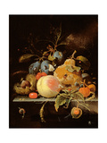 Still Life of Fruit and Nuts on a Stone Ledge Giclee Print by Abraham Mignon