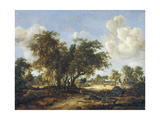 Wooded Landscape with Cottages, 1665 Lámina giclée por Meindert Hobbema