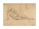 An Ecorche Study of the Dying Gaul, 1840 Giclee Print by William Linnell