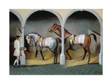 Stable Interior Giclee Print by Thomas Spencer