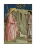 Joachim Among the Shepherds, C.1305 (Detail) Giclee Print by  Giotto di Bondone