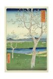 Fuji from Koshigaya, Mushashi, No.14 from the Series '36 Views of Mt. Fuji', ('Fuji Saryu Rokkei') Wydruk giclee autor Ando Hiroshige