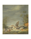 Fox and Waterfowl Giclee Print by Johann Friedrich August Tischbein