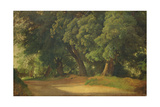 Oak Trees in Holstein Giclee Print by Louis Gurlitt