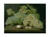 Grapes with Half a Walnut Giclee Print by Jacob Foppens Van Es