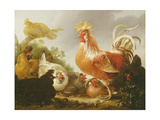 Cockerel and Hens in a Landscape, 1649 Giclee Print by Gysbert Hondecoeter