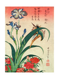 Kingfisher, Iris and Pinks, Pub. by Nishimura Eijudo, C.1832, One of a Set of Ten Prints Giclée-Druck von Katsushika Hokusai