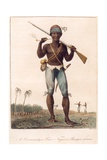 A Coromantyn Free Negro, or Ranger, Armed, Engraved by William Blake (1757-1827), Published 1806 Giclee Print by John Gabriel Stedman