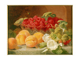 Bowl of Raspberries and Peaches Giclee Print by Eloise Harriet Stannard