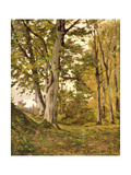 Forest at Fontainebleau, 1880 Giclee Print by Henri-Joseph Harpignies