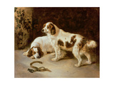 Brittany Spaniels Giclee Print by George Wiliam Horlor