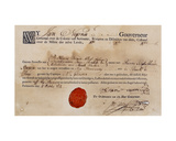 Slave Passport for Suriname, 1774 Giclee Print
