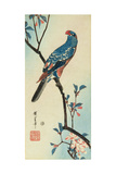 Parrot on a Branch Impression giclée par Ando Hiroshige