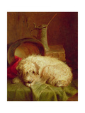 A Terrier Giclee Print by John Fitz Marshall