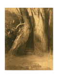 Two Trees, C.1875 Giclee Print by Odilon Redon
