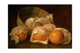 A Basket of Oranges, 1895 Giclee Print by Eloise Harriet Stannard