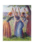 Women Planting Peasticks, 1891 Giclee Print by Camille Pissarro