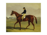 'Preserve' with Flatman Up at Newmarket, 1835 Giclee Print by John Frederick Herring Jnr