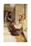 Shy Giclee Print by Sir Lawrence Alma-Tadema