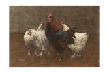 Fowls, 1896 (Detail) Giclee Print by Horace Mann Livens