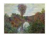 Small Branch of the Seine, 1878 Giclee Print by Claude Monet