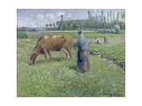 Girl Tending a Cow in Pasture, 1874 Giclee Print by Camille Pissarro