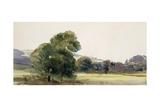 Trees in a Field Giclee Print by Peter De Wint