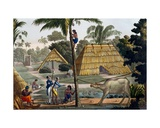 Naturalists Question Natives Near Kupang, Timor, Plate 7 from 'Le Costume Ancien Et Moderne' by… Giclee Print by Felice Campi