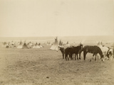 Indian Camp Blackfoot Reserve, Canada, 1880-89 Photographic Print by William Notman