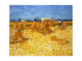Harvest in Provence, June 1888 Giclee Print by Vincent van Gogh