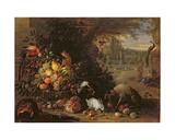 Still Life in a Garden, C.1700 Giclee Print by Adriaen de Gryef